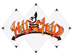 Sponsor of Attitude MMA Fights IX - Wild Child logo